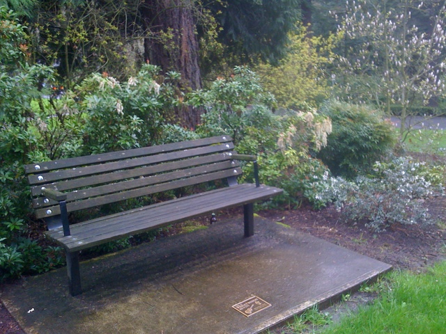 There's a bench remembering Wesley Hewitt in Washington Park, not far from where he died.