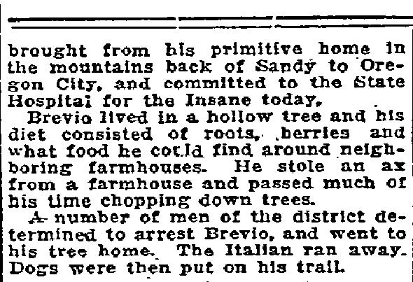 Dogs tree insane man - February 23, 1916