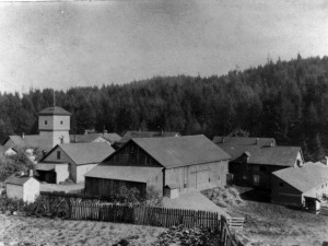 The Hillside Farm, a 160-acre poor farm owned and operated by Multnomah County from 1868 to 1911, was located in a portion of Washington Park currently occupied by the zoo, Hoyt Arboretum and the World Forestry Center.