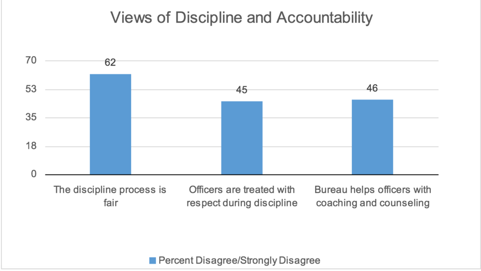 Views of discipline and accountability