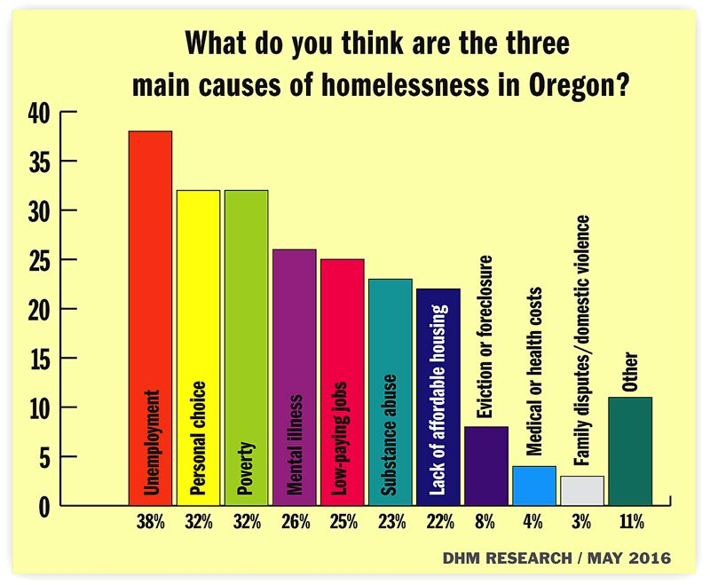 Homelessness poll graphic 1